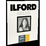 1x 10 Ilford MG IV RC 25M  24x30